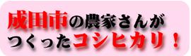 成田市の農家さんが作ったコシヒカリ